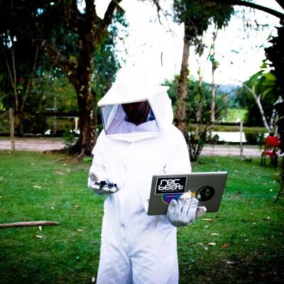 Testes roupa abelha
