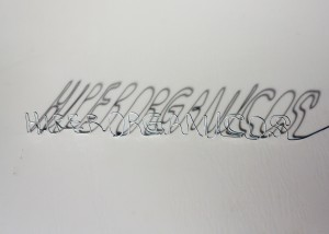 hiperorgs (1)